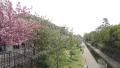 京都堀川親水公園