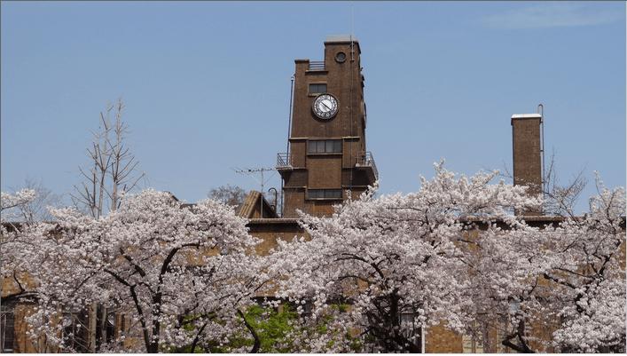 2014先端研の桜1